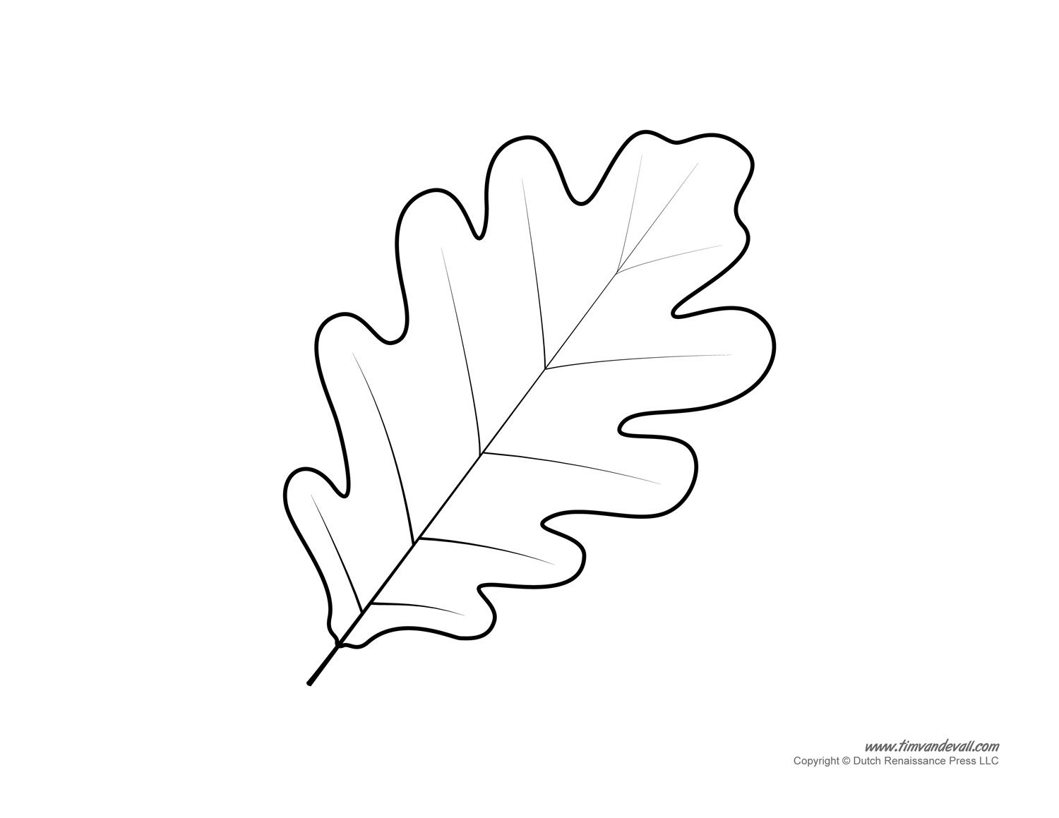 Oak Leaf Pattern. A High Resolution Version Of The Leaf Drawing Will - Free Printable Oak Leaf Patterns