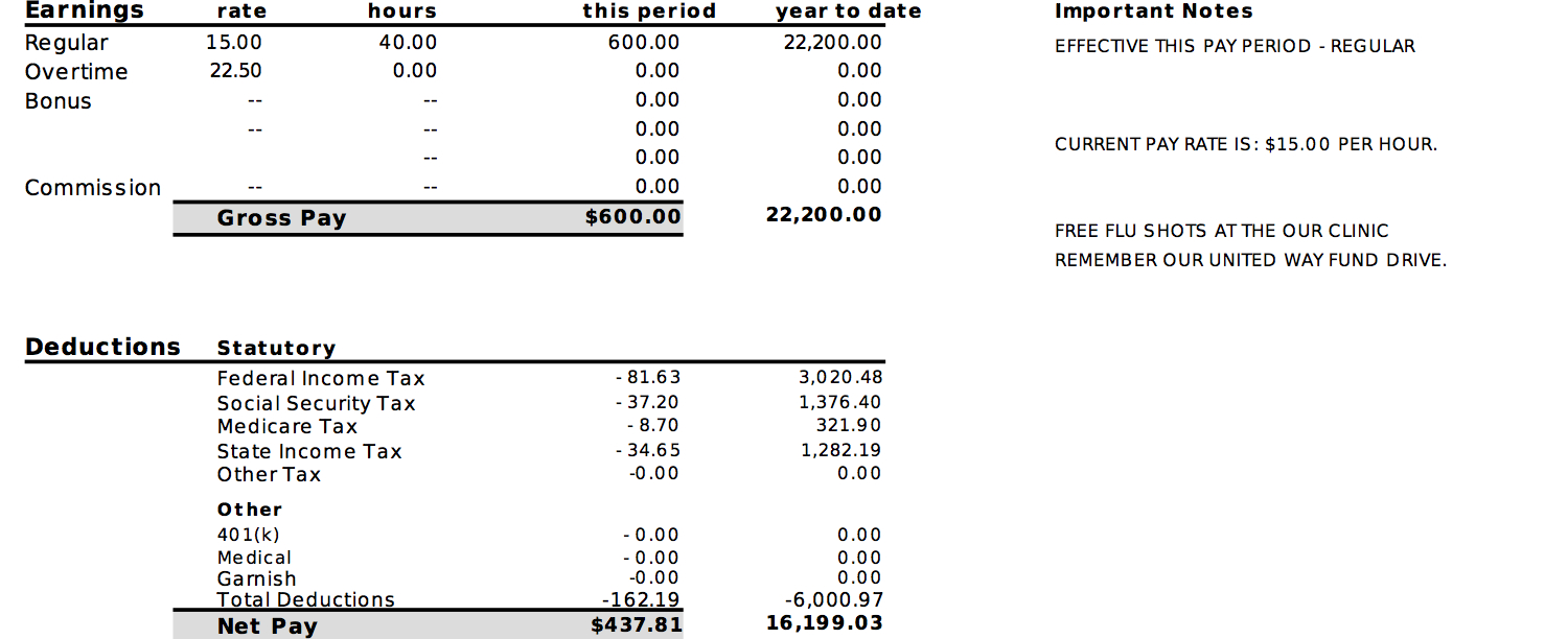 Pay Stub Info - Learn - Examples - Testimonials - Free Preview - Free Printable Pay Stubs