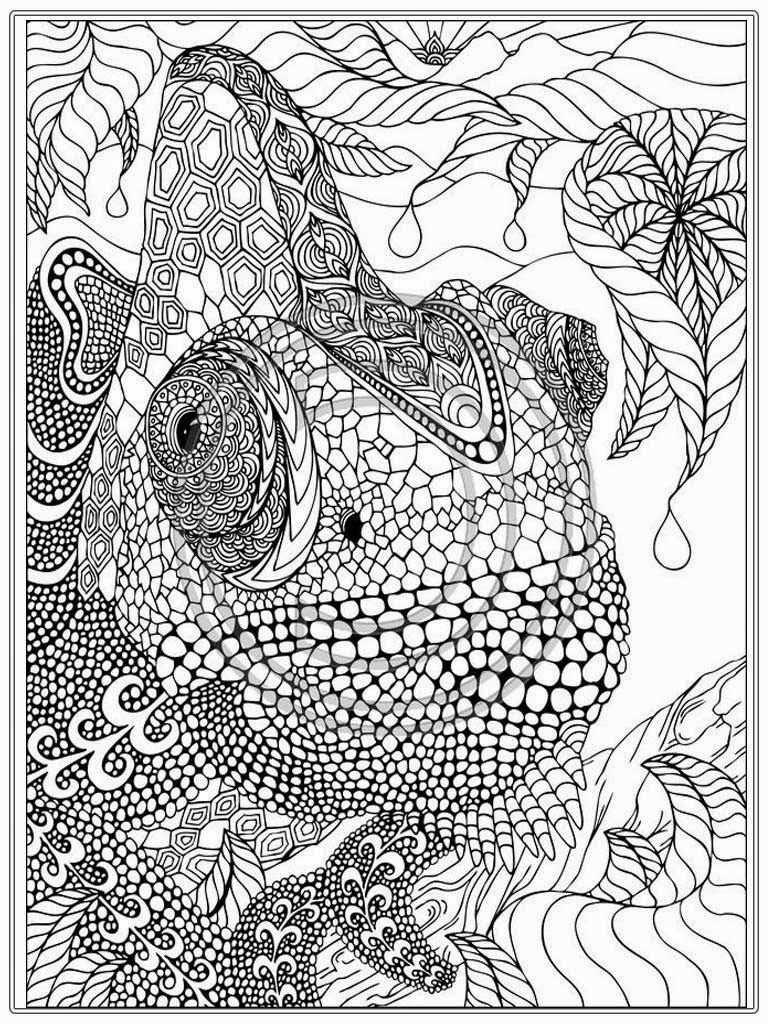 Printable Iguana Adult Coloring Pages   Realistic Coloring Pages - Free Printable Realistic Animal Coloring Pages
