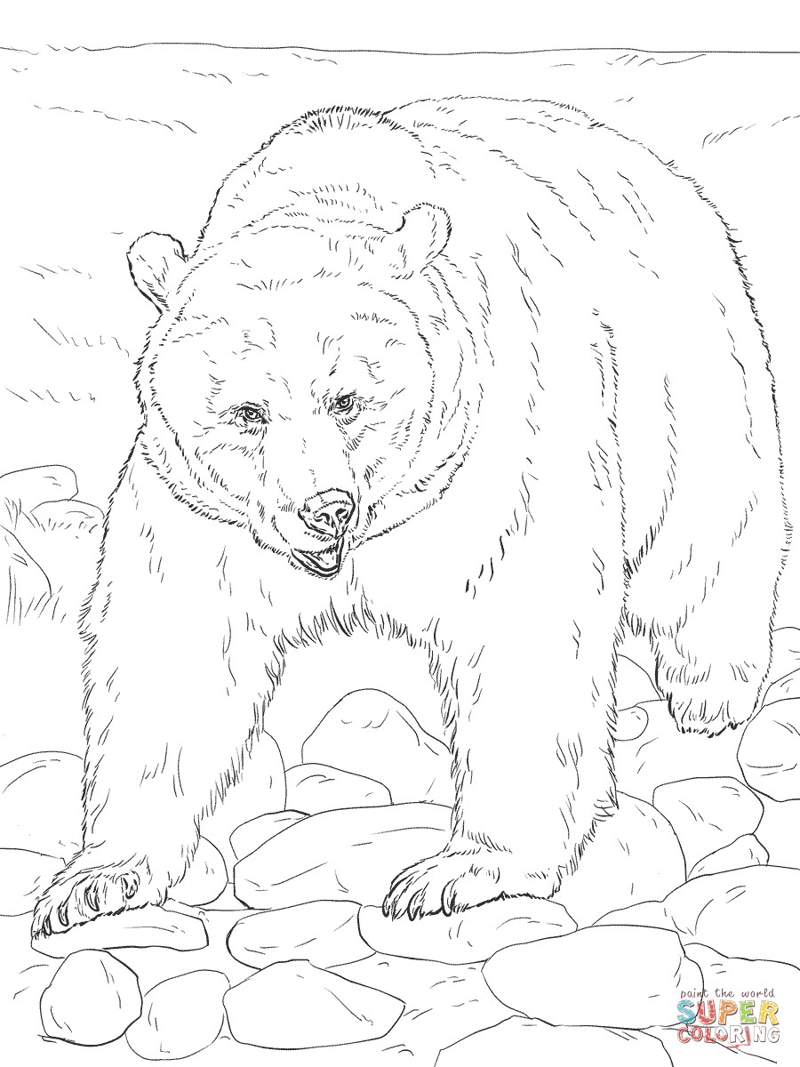 Realistic Animal Coloring Pages - Free Printable Wild Animals - Free Printable Realistic Animal Coloring Pages