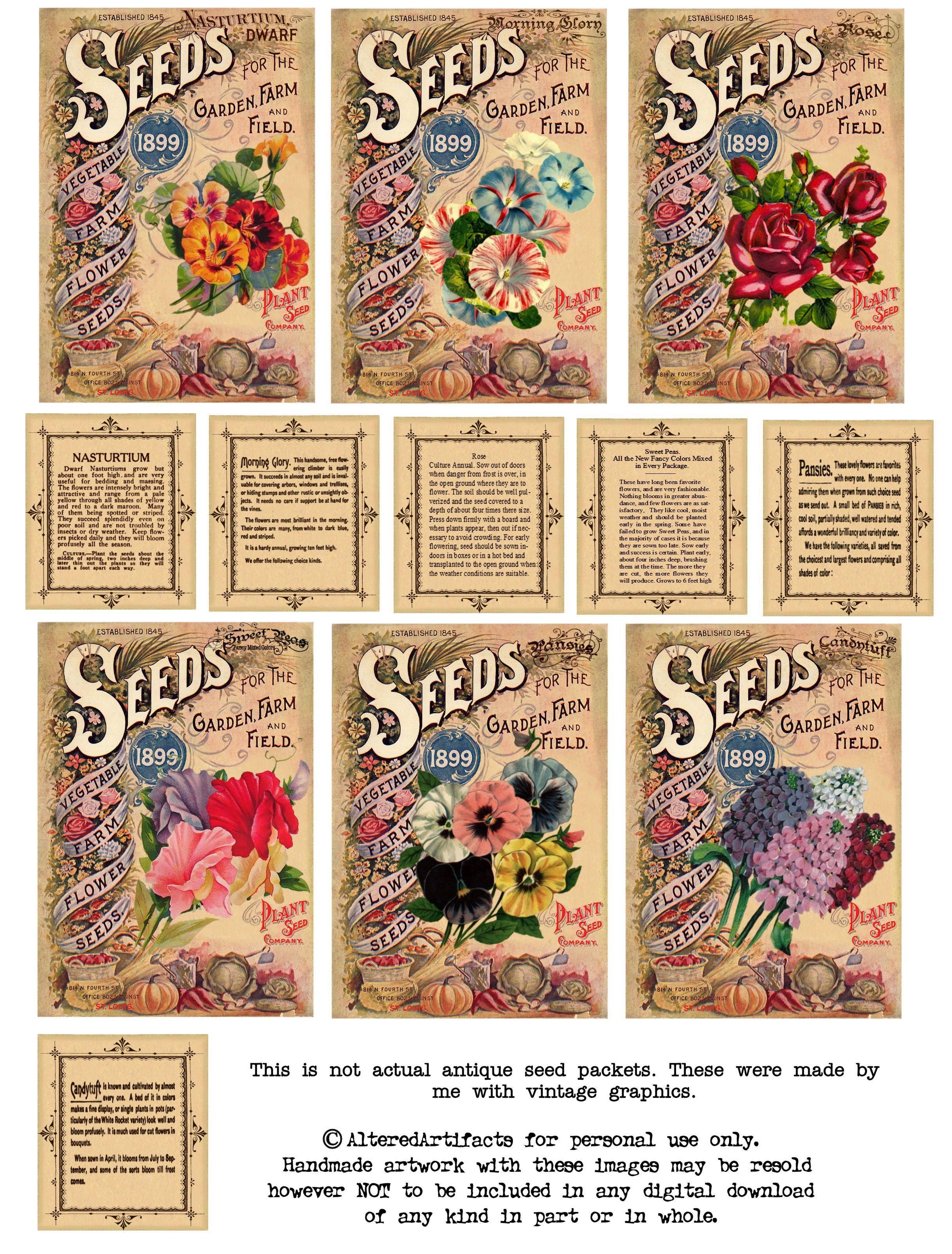 Vintage Seeds Art Free Print | Free Antique Flower Seed Packets - Free Printable Vintage Pictures